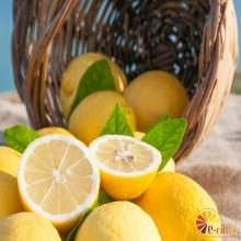 Limón 10 Kg