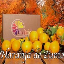 Naranja Zumo 20 Kg